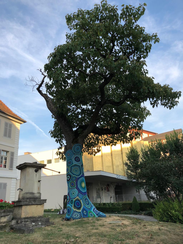 Un arbre habillé à Mulhouse