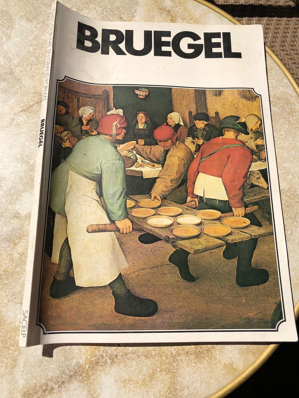 Recueil de peinture du peintre Bruegel